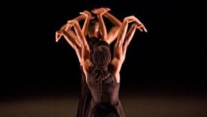 IT Dansa, d'estrena en el Mercat de les Flors