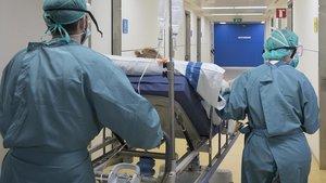 Dos sanitarios trasladan a un paciente de covid-19.