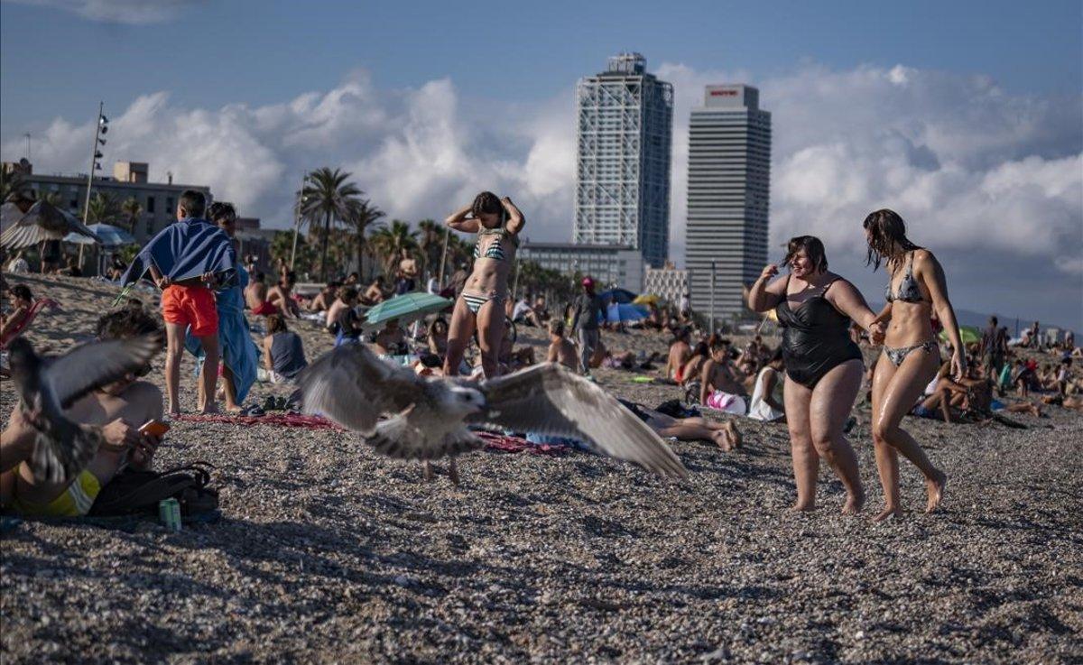 La playa de la Barceloneta, el pasado 15 de julio.