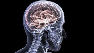 La Sanidad estadounidense edita una guía para distinguir el alzhéimer de un tipo de demencia