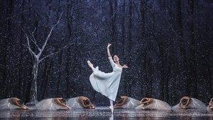 El Centre Cultural de Terrassa acull la representació d''El Trencanous' a càrrec del Ballet de Barcelona