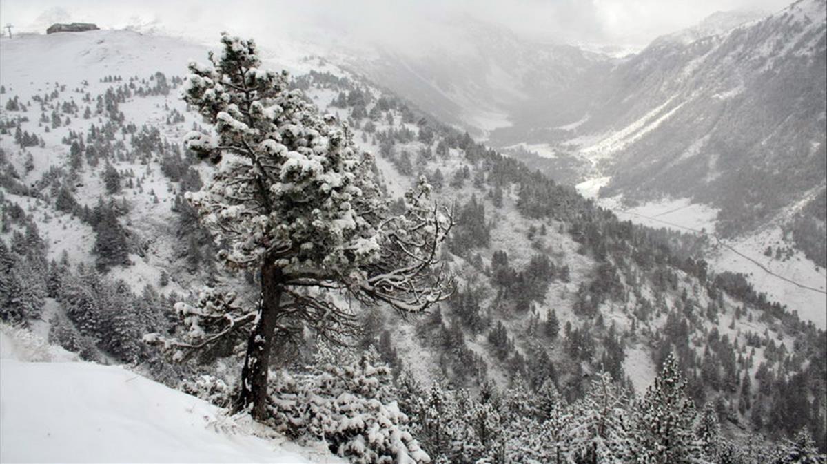 Imagen de archivo de la Vall d'Aran.