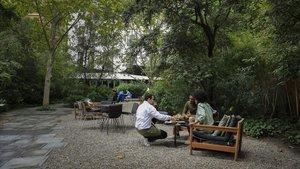 Jardín del Hotel Alma.