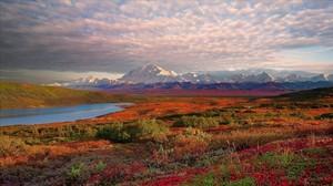 Parque Nacional Denali, en Alaska.