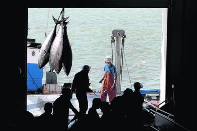 Pesca con almadraba de atún rojo atlántico en Barbate, en Cádiz.