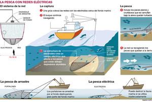 Cómo es la pesca eléctrica