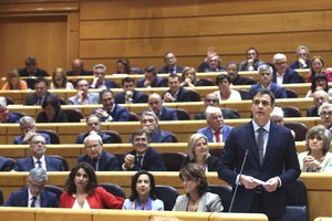 Vox s'estrenarà al Senat després de la sagnia de vots del PSOE i el PP