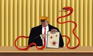 Trump y la campaña del caos