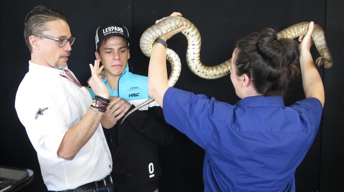 Ignasi Sagnier, DIRCOM del Mundial, a la izquierda, ayuda a Joan Mir para que se fotografie con una serpiente pitón, en Phillip Island (Australia).