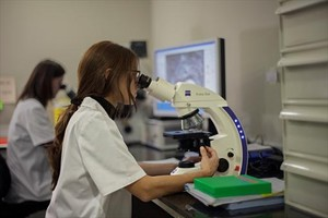 Tareas de investigaciónen un laboratorio.