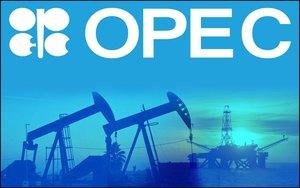 La Organización de Países Exportadores de Petróleo (OPEP).