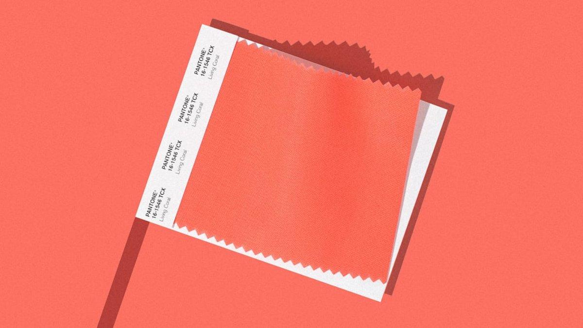 Revista: Pantone anunció cuál será el color del 2019