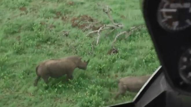 El proyecto Ranger Drone para evitar la caza furtiva de rinocerontes