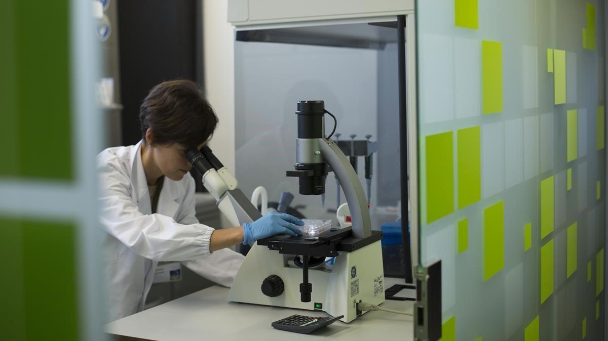 Una científica trabaja en el laboratorio, en una imagen de archivo