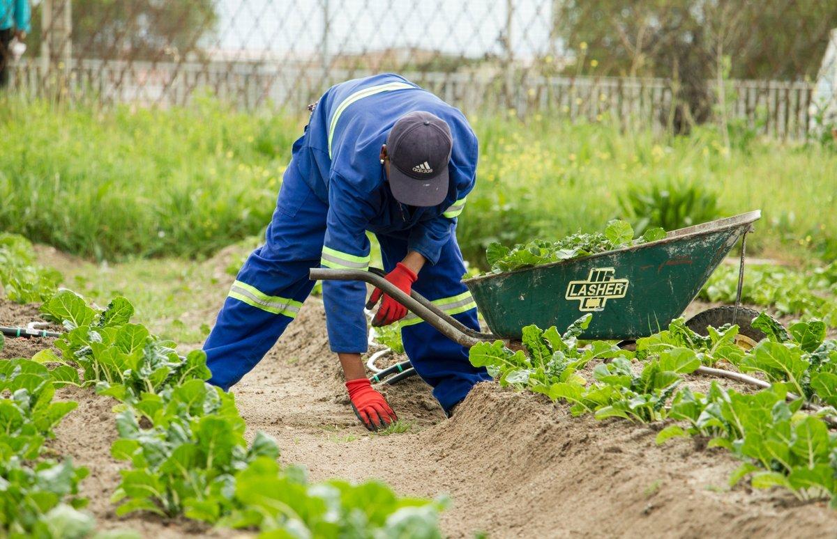 El agricultor deberá adaptarse para asegurar su viabilidad y competitividad