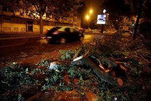 Árboles caídos por el suelo a causa de los vientos de la tormenta tropical Leslie, en Benfica (Portugal).