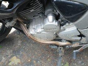 Trobada una serp enrotllada en una moto a Barcelona