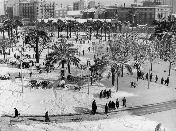 La nieve tiñió de blanco las palmeras de la plaza de Tetuán.