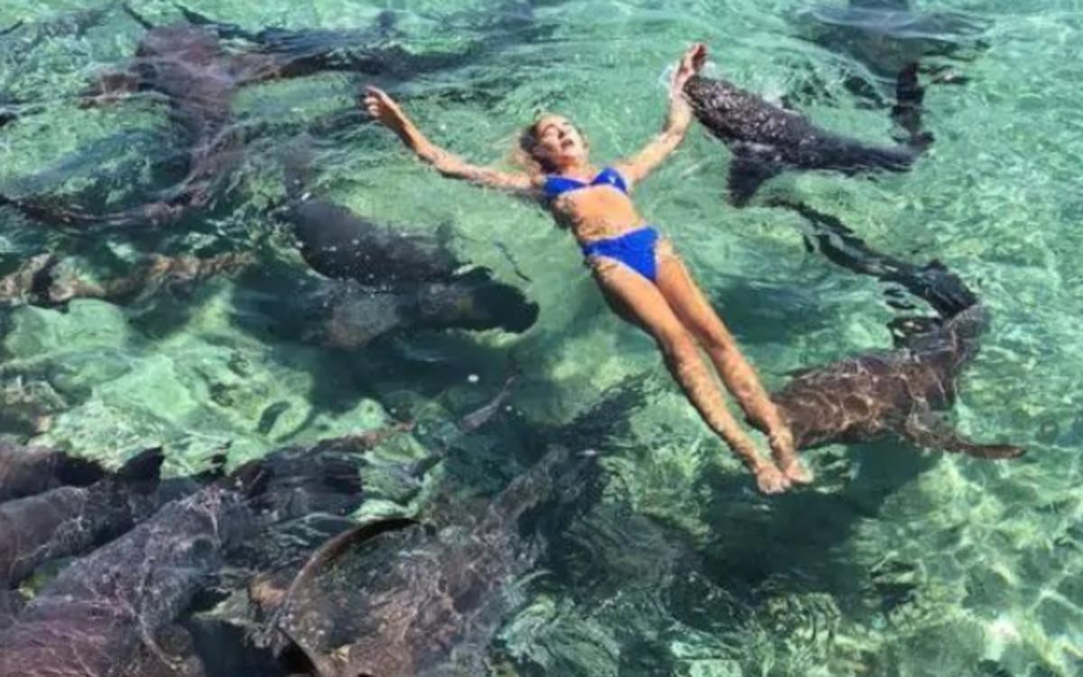 Una modelo es atacada por un tiburón mientras se hacía una foto