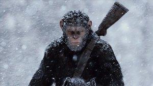 Disney treballa en una nova pel·lícula de la saga 'El planeta dels simis'