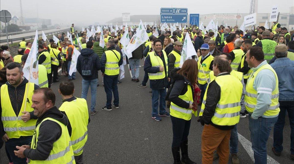 Agricultores cortan la carretera en Andújar (Jaén).