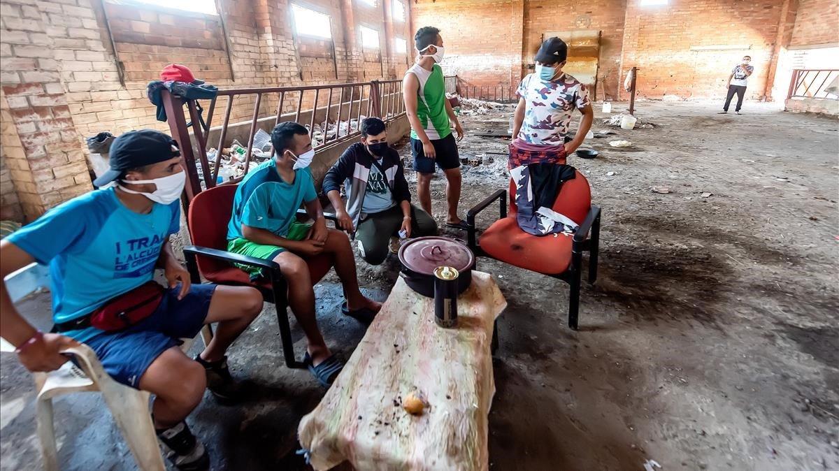 Varios de los chicos que ocupan esta granja abandonada del Segrià. Algunos, dicen, sí están trabajando en la campaña de la fruta. Ellos, no. Comemos una vez al día, no hay tanta comida para todos, explican