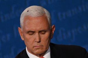 La mosca sobre la cabeza de Mike Pence, durante el debate de vicepresidentes.