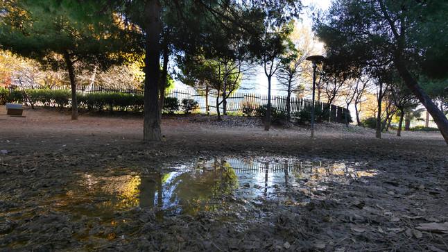 Charco en el pipican del parque de Diagonal Mar