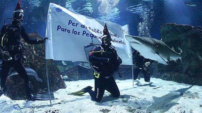 Antonio Orozco nada entre tiburones en el Aquàrium de Barcelona para felicitar la Navidad.