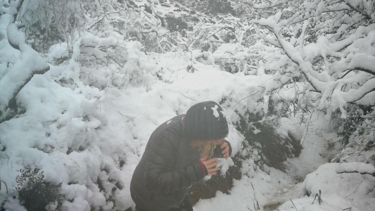 La nieve ha pintado de blanco la Font de lAmigó, en Badalona.