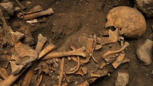 L'humà d'Atapuerca era caníbal pel seu baix cost