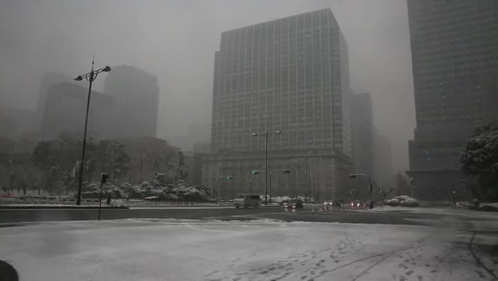 Les fortes nevades registrades avui a Tòquio han activat lalerta més important per aquest fenomen meteorològic en quatre anys.