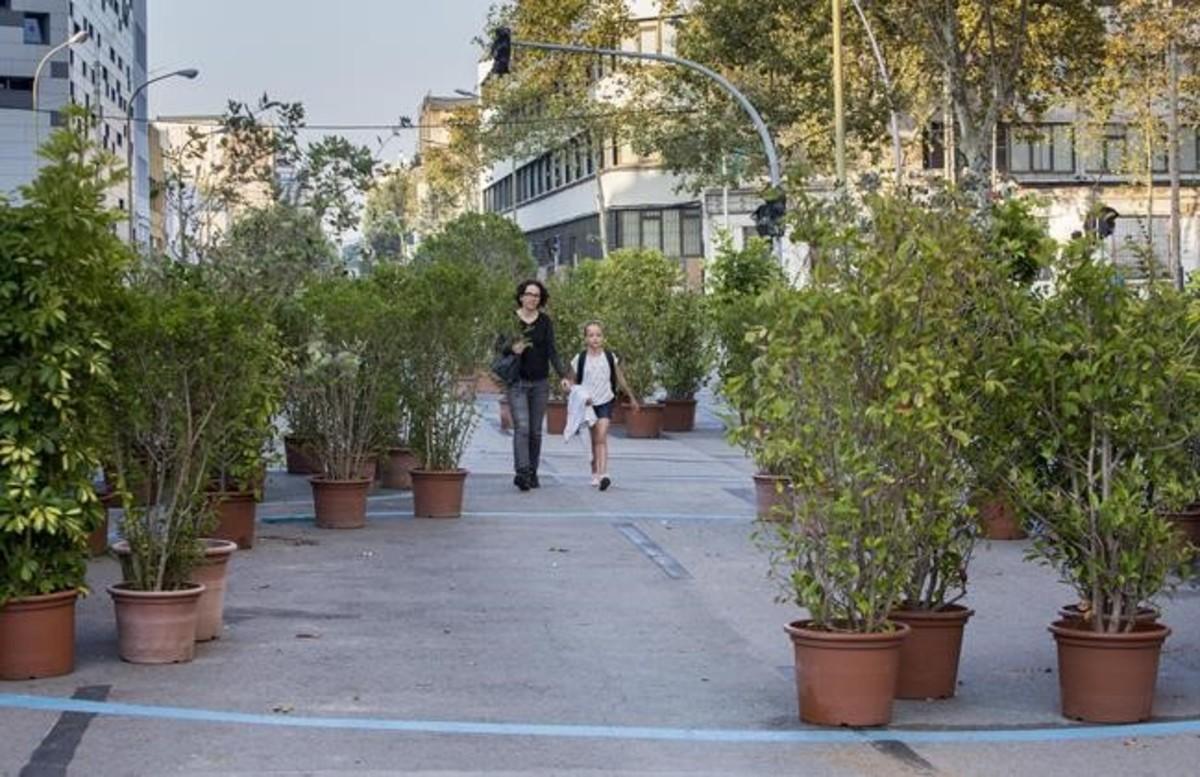 Una madre y su hija pasean entre la vegetación instalada en el centro de la calle de Almogàvers.