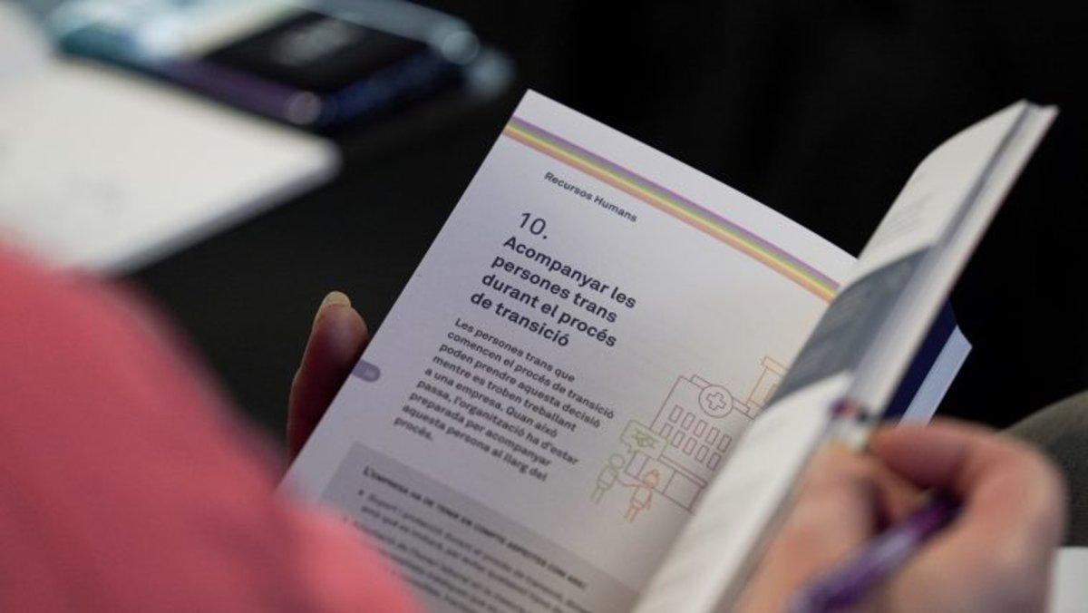Guía de buenas prácticas LGTBI para las empresas.