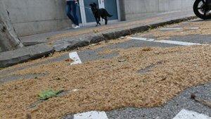 Barcelona pateix els efectes d'una menys freqüent neteja des del confinament