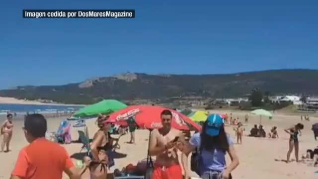 Una vaca y su ternero se refugian del calor en una playa de Cádiz
