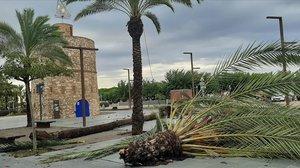 Daños por la tormenta en Vilanova i la Geltrú.