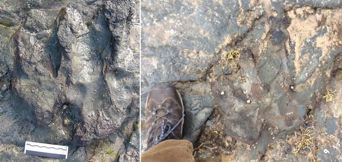 EPA5091. BENURONG MARINE PARK (AUSTRALIA), 20/12/2017.- Combo fotográfico facilitado por Parks Victoria hoy, 20 de diciembre de 2017 que muestra una huella de un dinosaurio de 115 millones de años antes del ataque (izq) y después del acto vandálico en Flat Rocks, Benurong Marine Park, Victoria (Australia). EFE/ Parks Victoria Handout SOLO USO EDITORIAL PROHIBIDA SU VENTA PROHIBIDO SU USO EN AUSTRALIA Y NUEVA ZELANDA