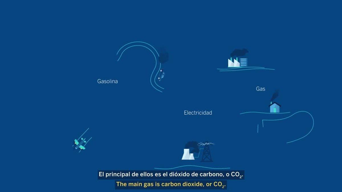 Vídeo sobre la huella de carbono para empresas.