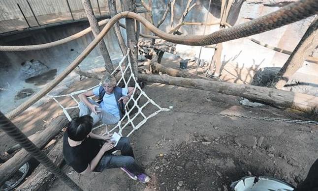 Maria Teresa Abelló, la primatóloga alfa del Zoo de Barcelona, en una de las hamacas del nuevo hábitat de los orangutanes.