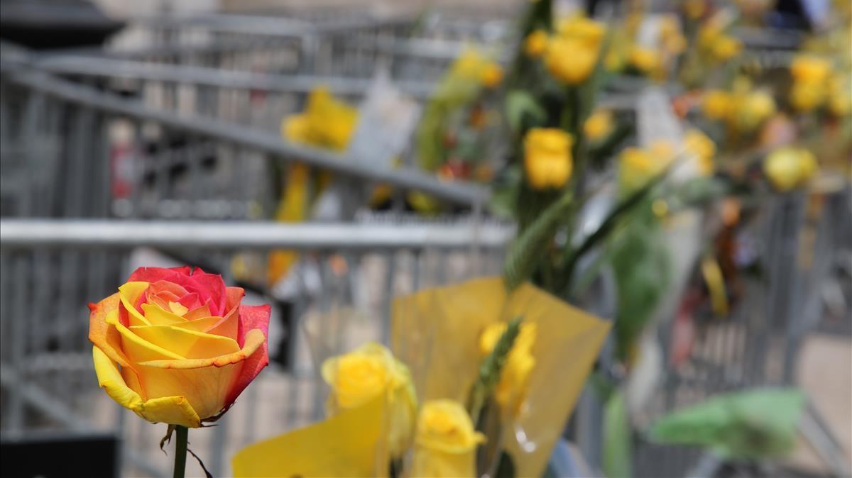Rosas reivindicativas en las vallas frente al Palau de la Generalitat.