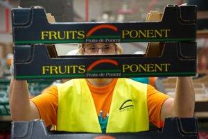Una empleada de Fruits de Ponent con una caja de la empresa.
