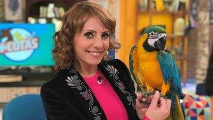 '+Cotas' torna aquest dissabte a TVE amb la seva segona temporada