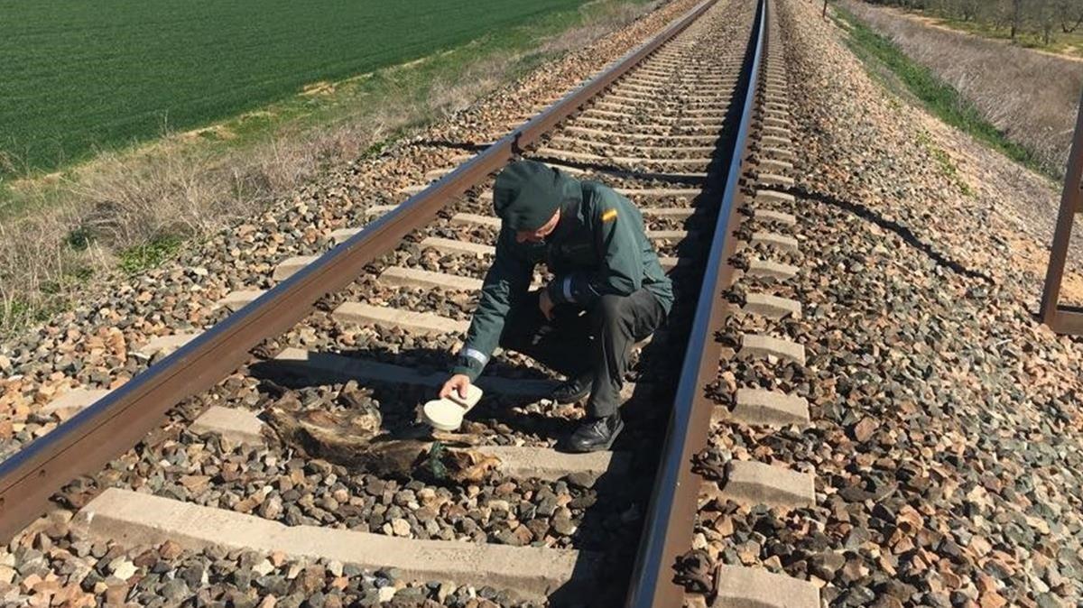 Un guardia civil inspecciona los restos de un animal al que un delincuente había atado a las vías de un tren, en Olivares (Sevilla), el año pasado.