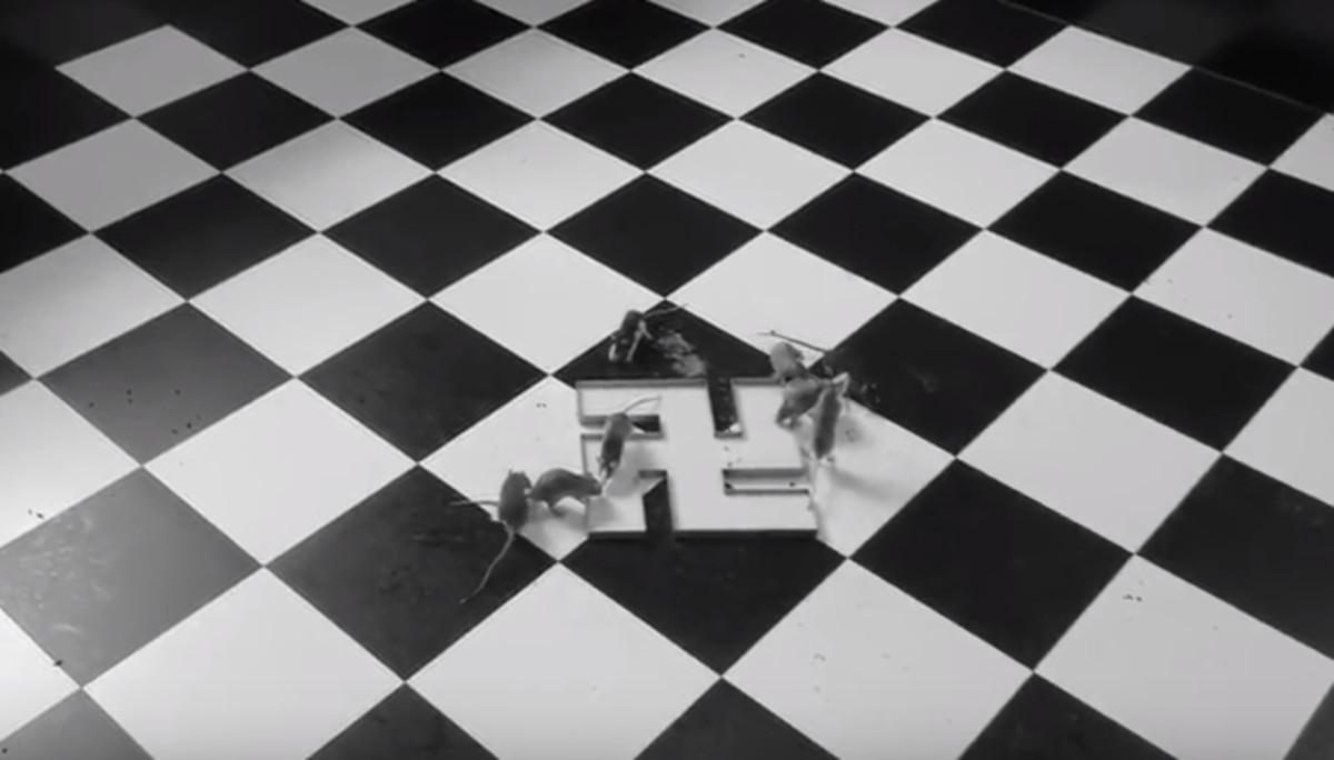 Imagen del vídeo de El bebedero, obra de Santiago Sierra