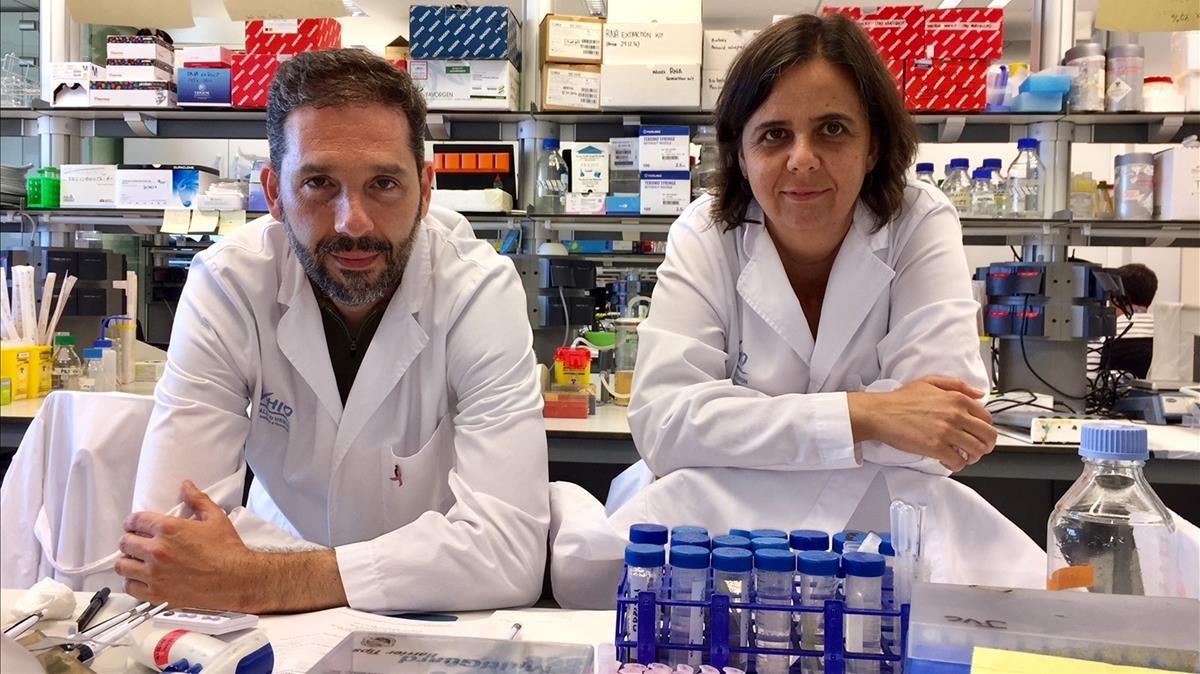 Los doctores Josep Villanueva y Olga Méndez, responsables del hallazgo.