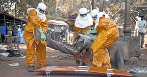 Sanitaris de lOMS retiren el cadàver dun malalt dEbola a Guinea, el gener passat.