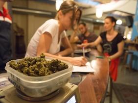 fcasals29552391 barcelona 04 05 2015 club de cannabis g13 en carre160419183143