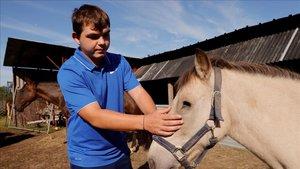 El granjero Remy Marechal muestra el ojo herido de uno de sus caballos, de nombre Noel, en la localidad de Preux-au-Bois.