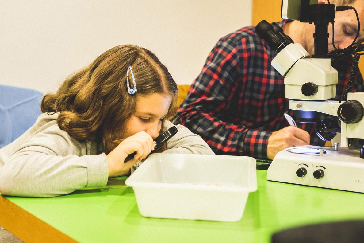 Coses boges per fer amb científics